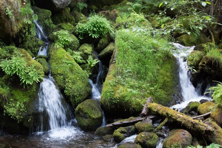 waterfall cascade hort_LR_IR.jpg