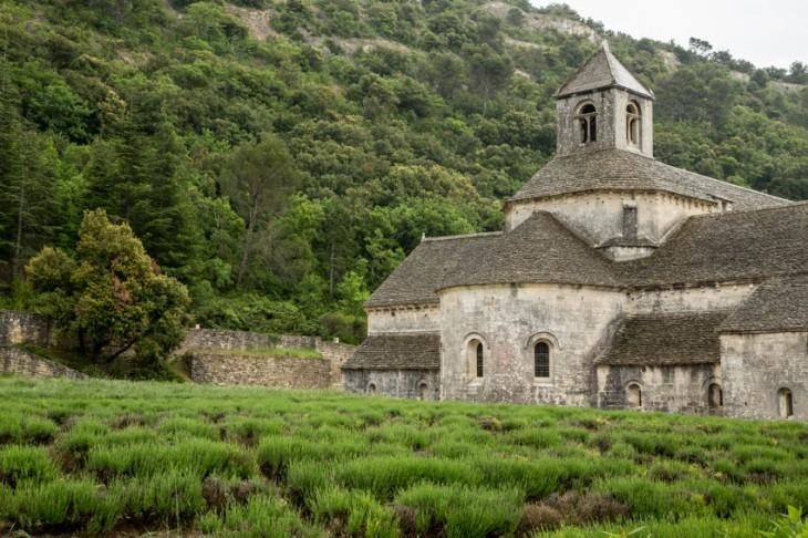 abbey grds_IR.jpg