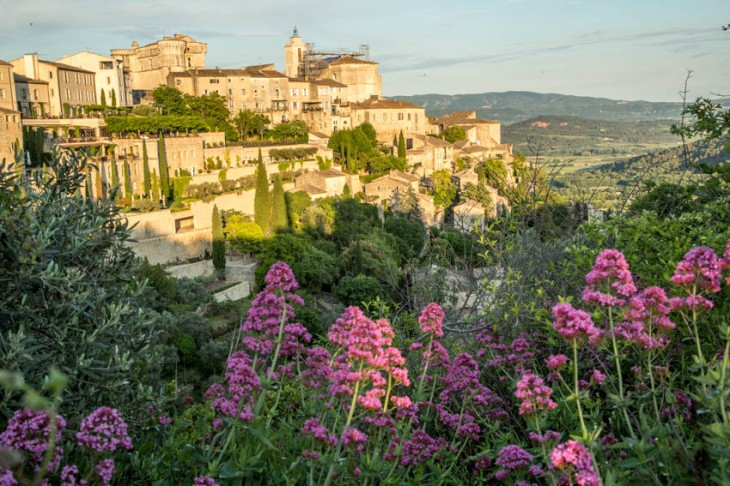 gordes flowers_IR.jpg