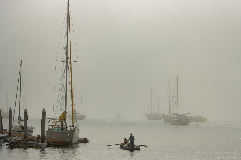 Morro Fog_IR.jpg